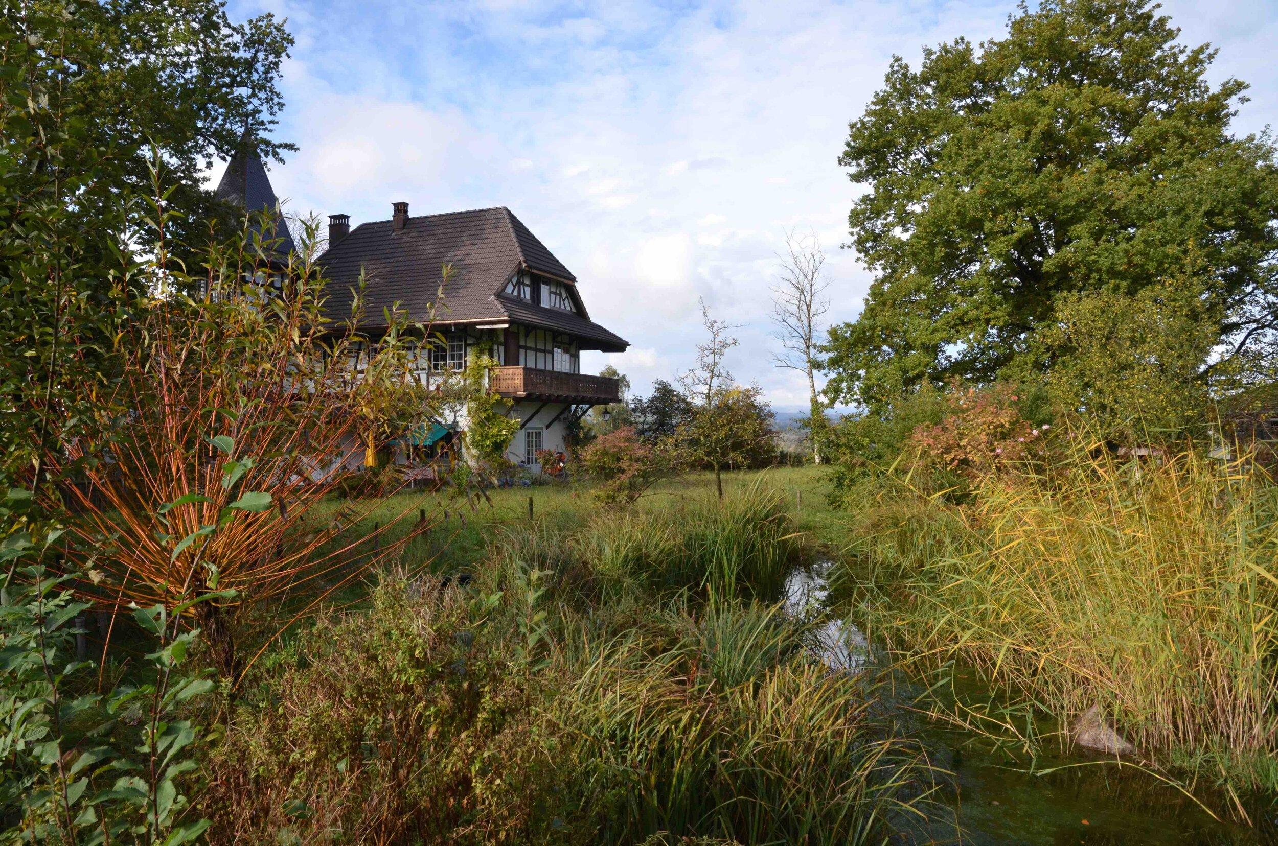 Berg am Irchel : Gemeinde-Idylle mit Natur: