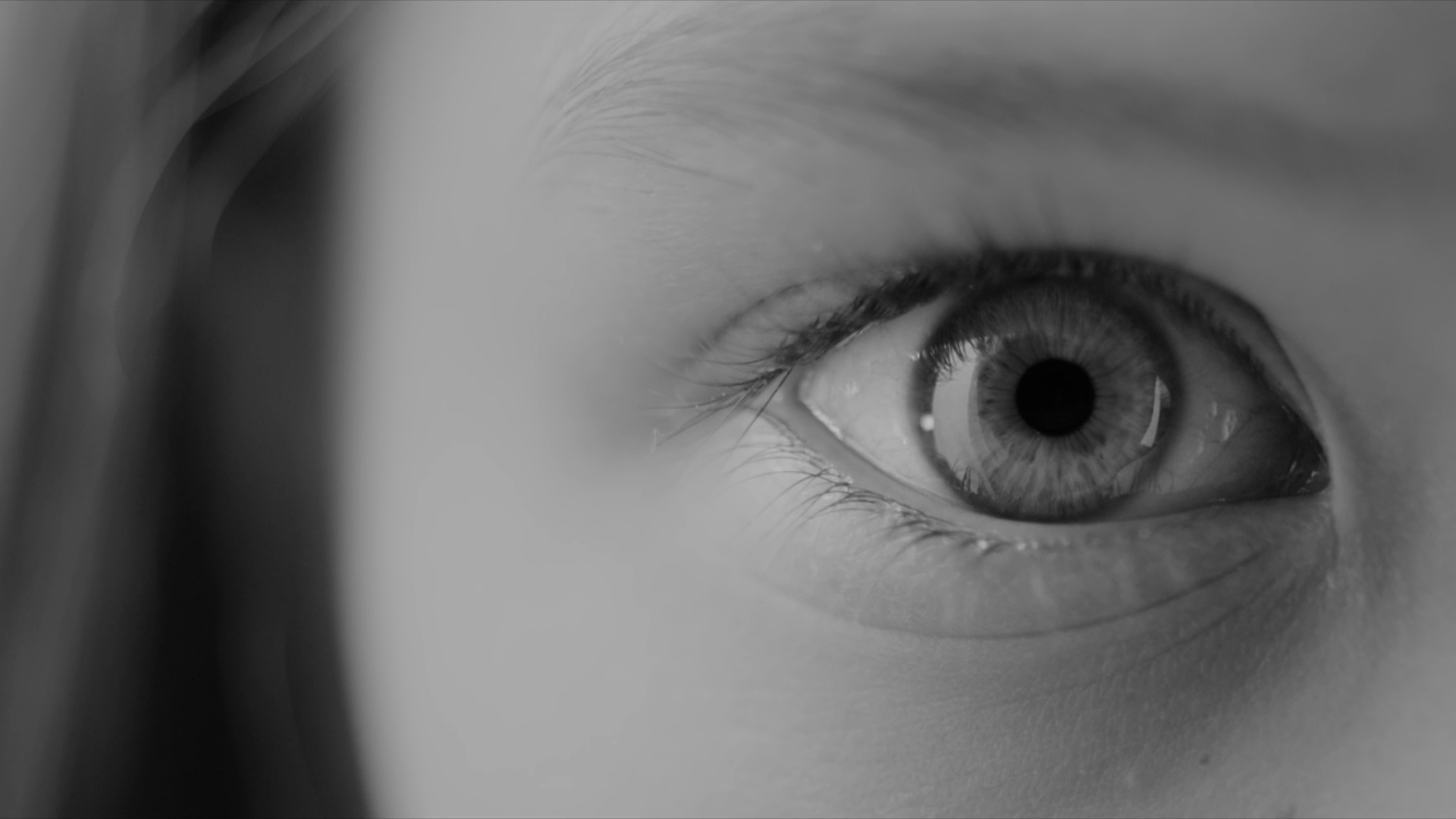 peq-eye.jpg