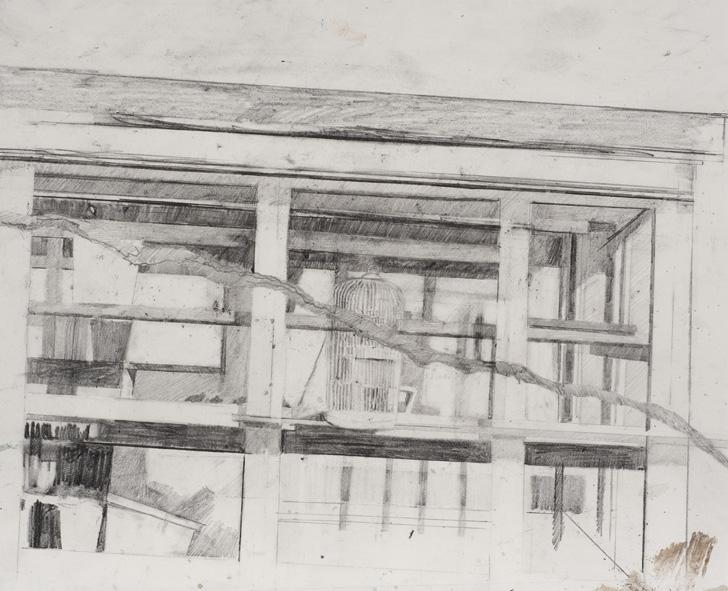 Birdcage drawing.jpg