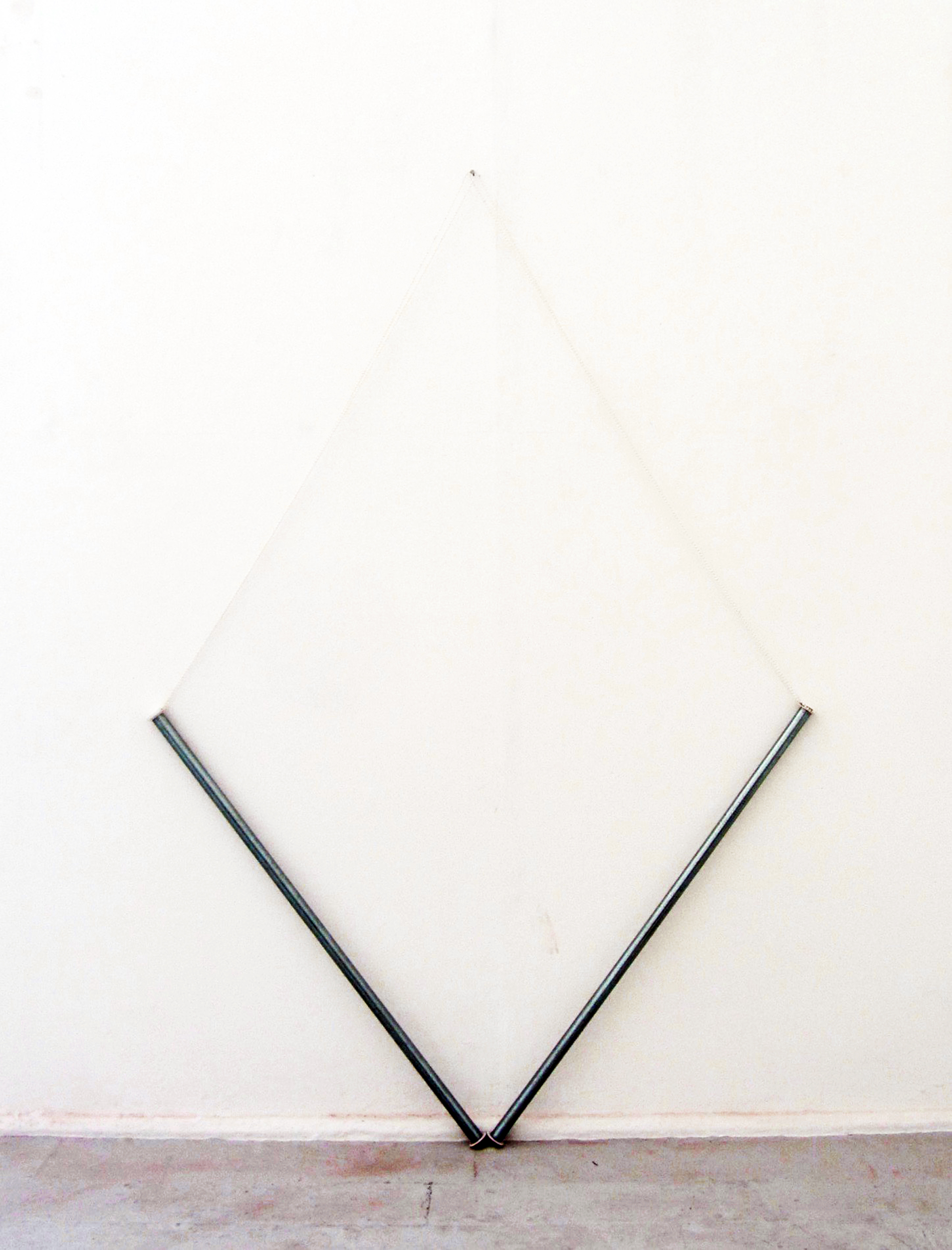 Roller Kite.jpg