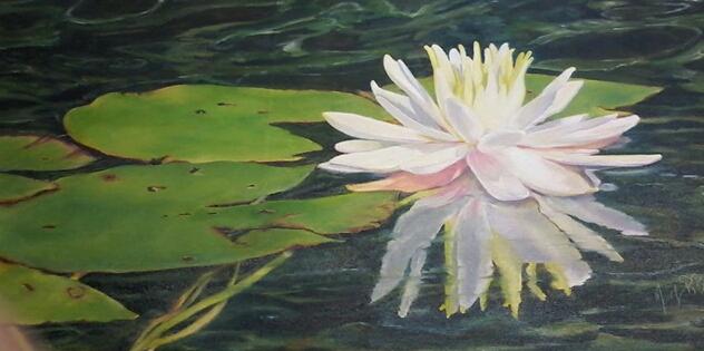 MaryBurke_Lotus