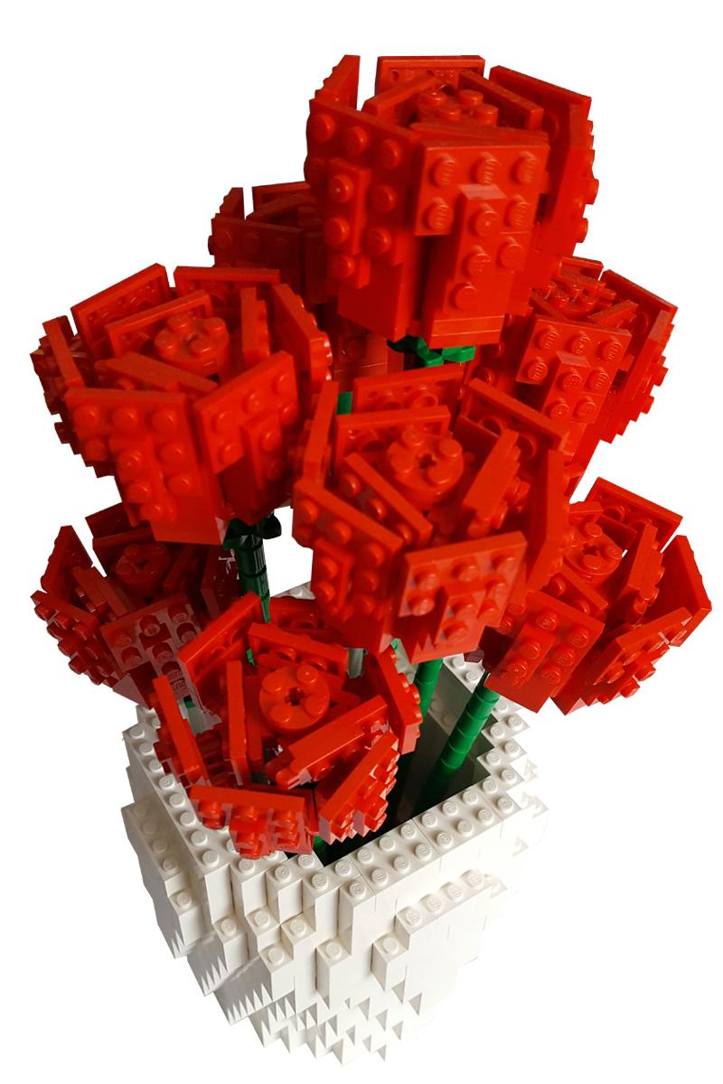 Red Rose 3 top pic large copy.jpg