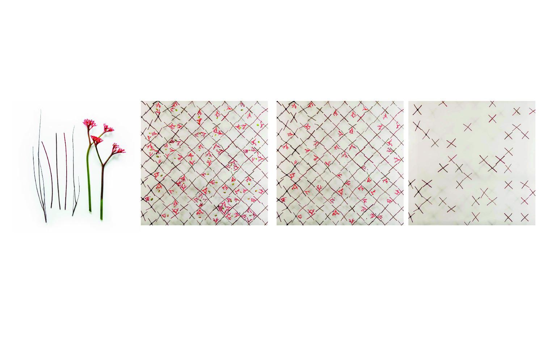 pattern 1 .jpg