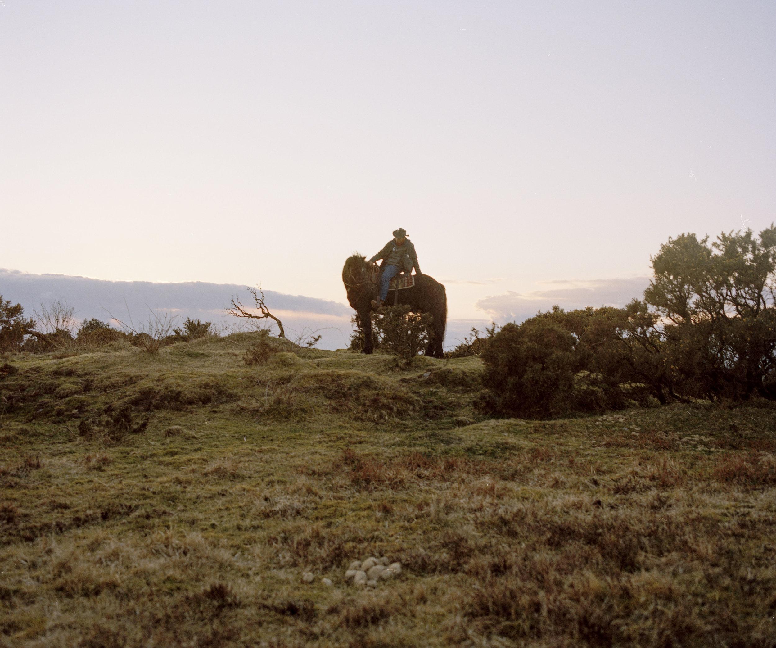 Philip Heard sitting on his horse as the sun sets across Dartmoors moorland.