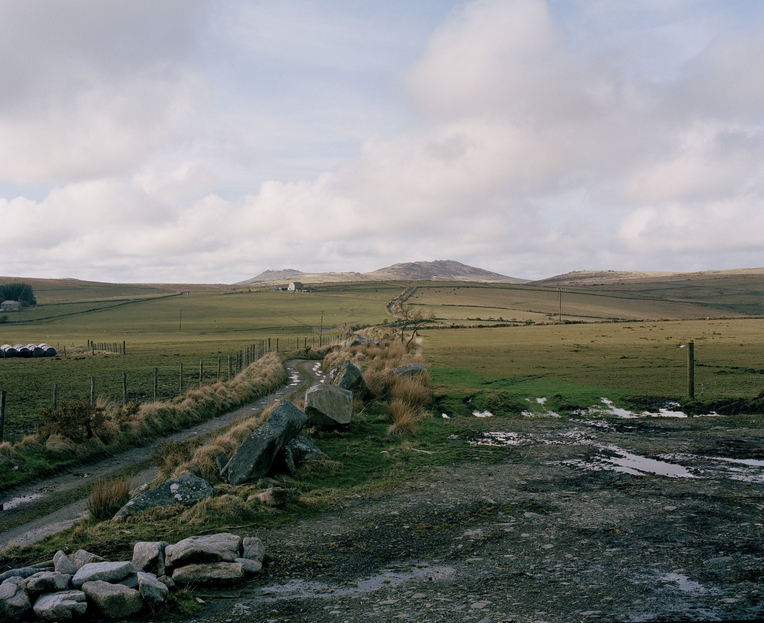 Bodmin Moor. This stretch of land is where Dan Wilson and his family have farmed for generations. They have all used western riding as a way of working with the cattle.