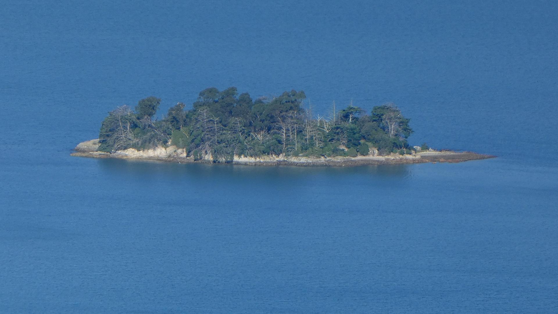 Desert Island.jpg