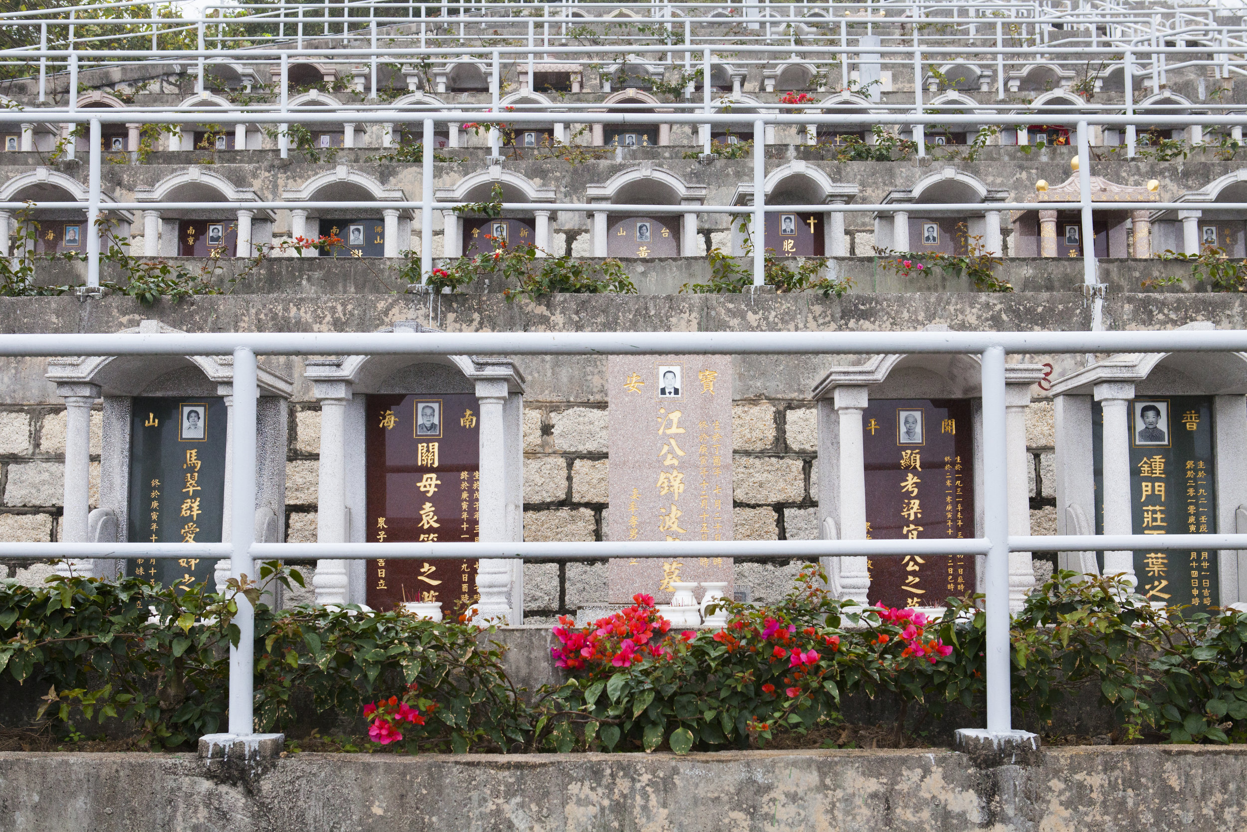 Tseung Kwan O Cemetery