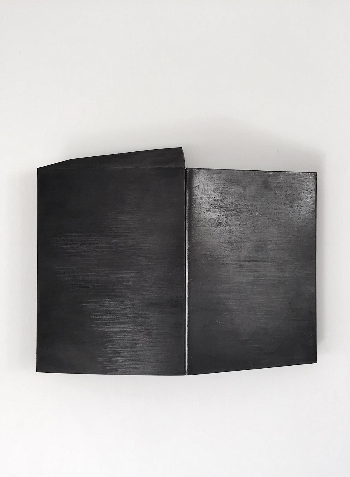 ENTRE EL DIAMANTE Y EL CARBON   Superficie de papel algodón 420g, hierro galvanizado, cubiertos de carbon y grafito. Medidas variables.  2015
