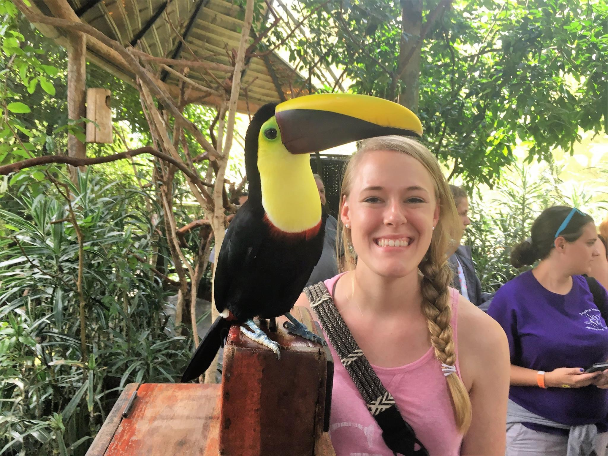 This photo was taken at La Paz Waterfall Gardens in Costa Rica. While studying abroad for one month with GWU peers, we had the opportunity to explore various zoos and go on excursions in the evening. I had the opportunity to get up close and personal with one of my favorite birds- the toucan!