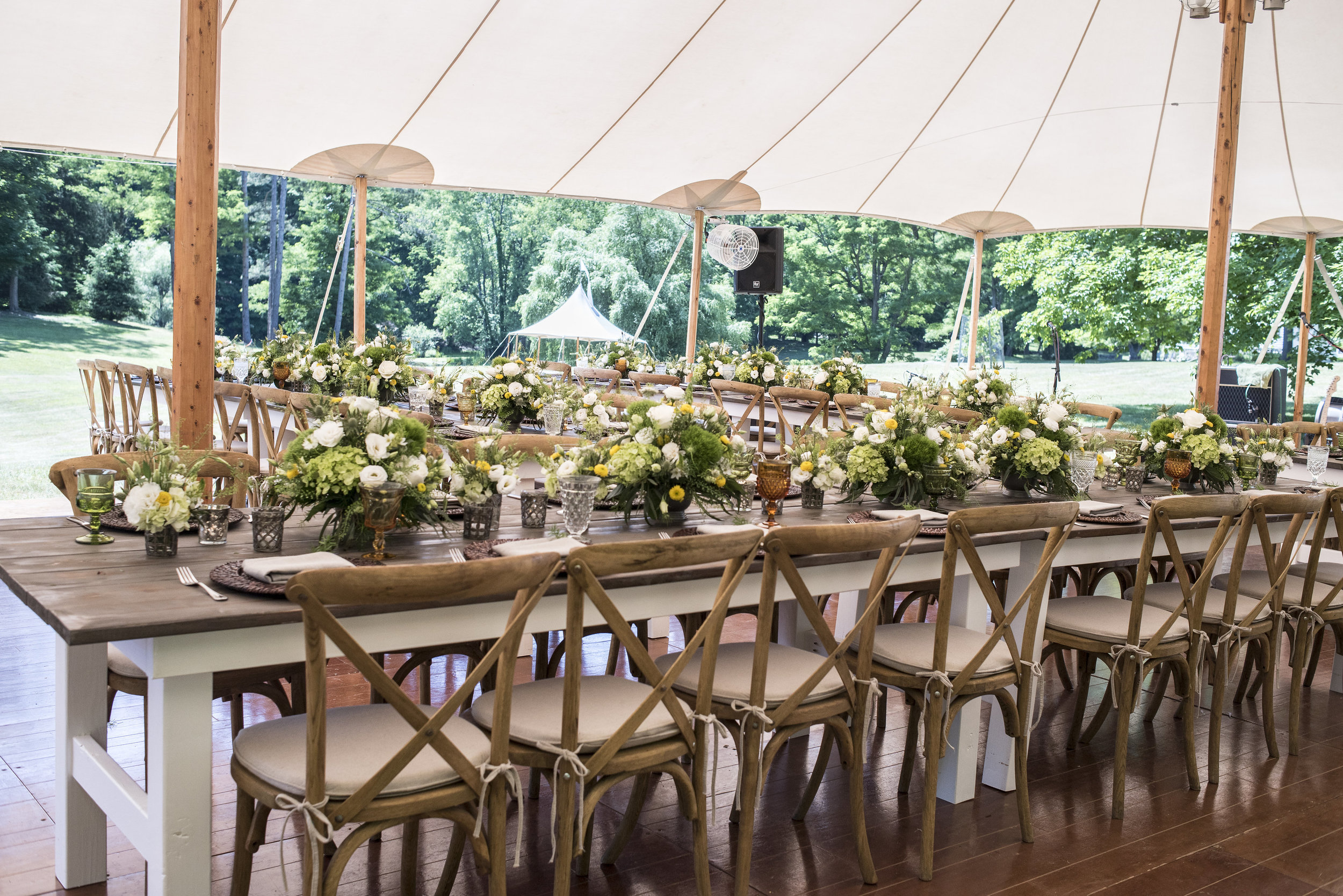 Andrea-Freeman-Events-Social-Event-Summer-Party-Rhinebeck-NY-10.JPG