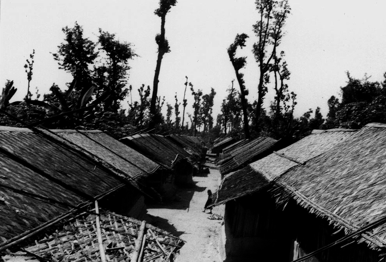 I took this photo nearby my hut. Refugee huts are arranged in lines and are made out of bamboo and plastic. I have spent 8 years of my life living in camp and I do not know how many more years we will spend here. In Bhutan now our village has become a forest. We are becoming adults but have only distant dreams of our country. (c) Pasang / Rose Class / PhotoVoice