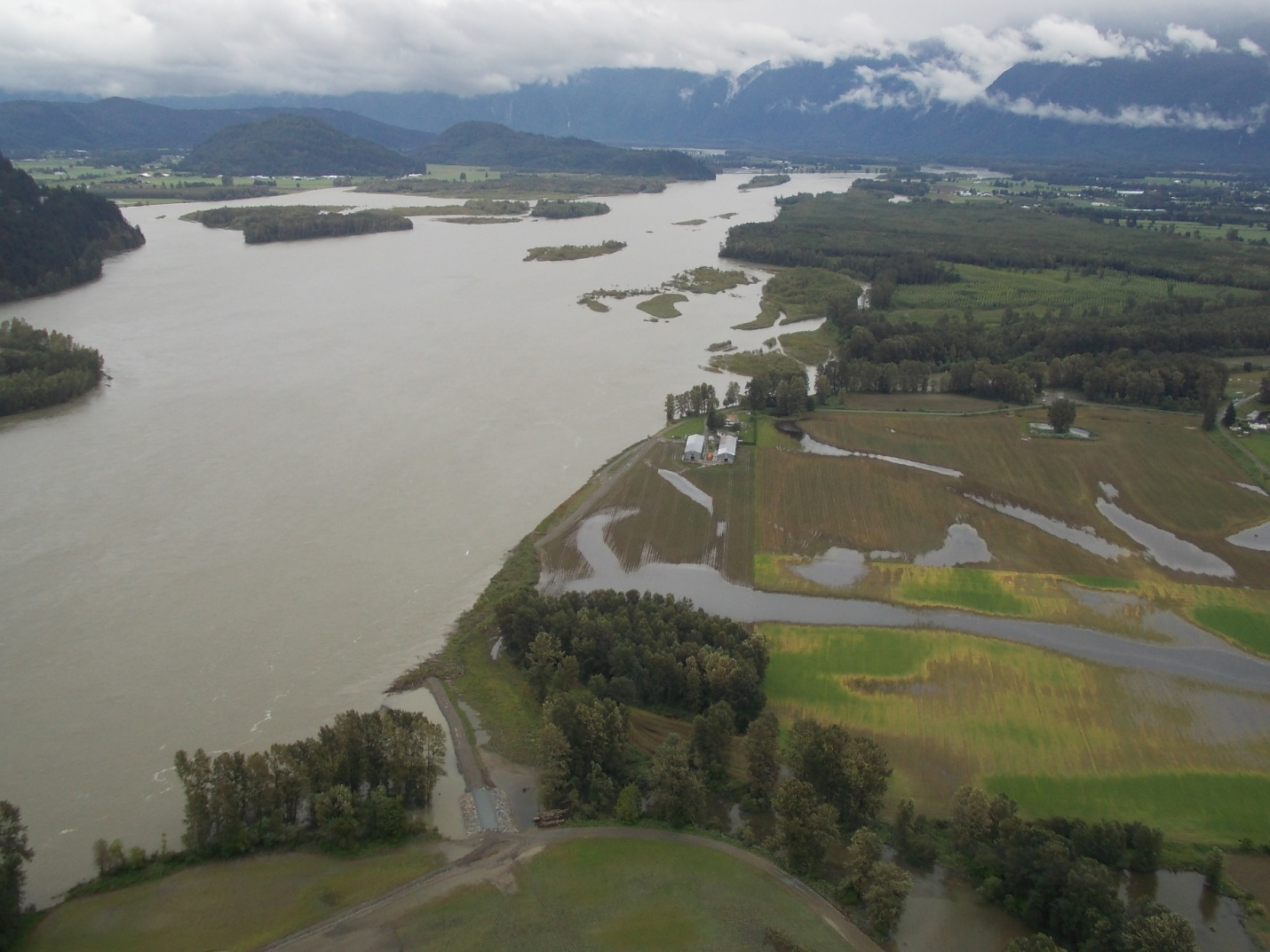 Fraser River June 2012 near Carey Point in Chilliwack bank full conditions.jpg