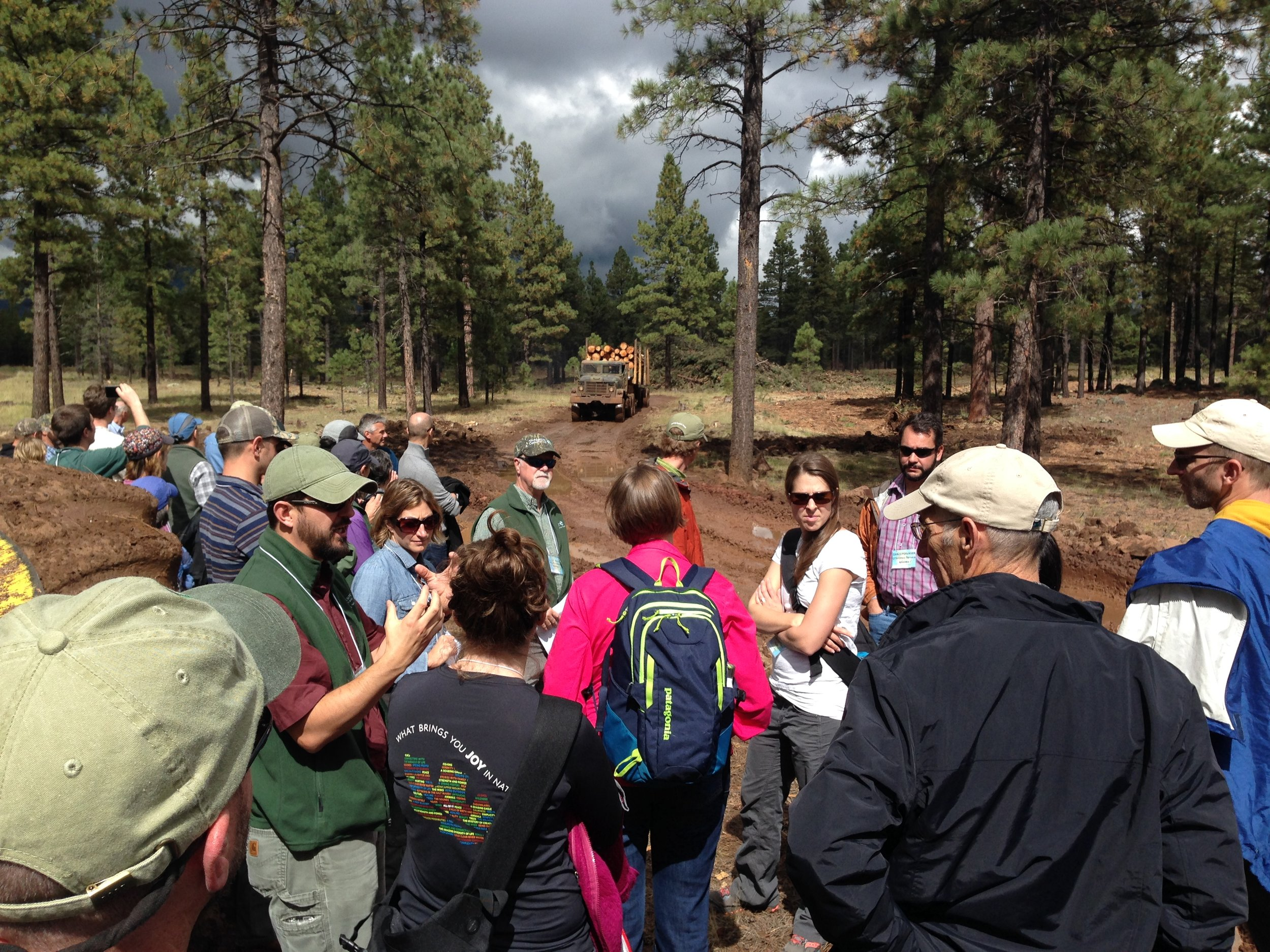 The Restoring America's Forests crew waiting for a log truck to pass in a northern Arizona ponderosa pine forest thinning project.
