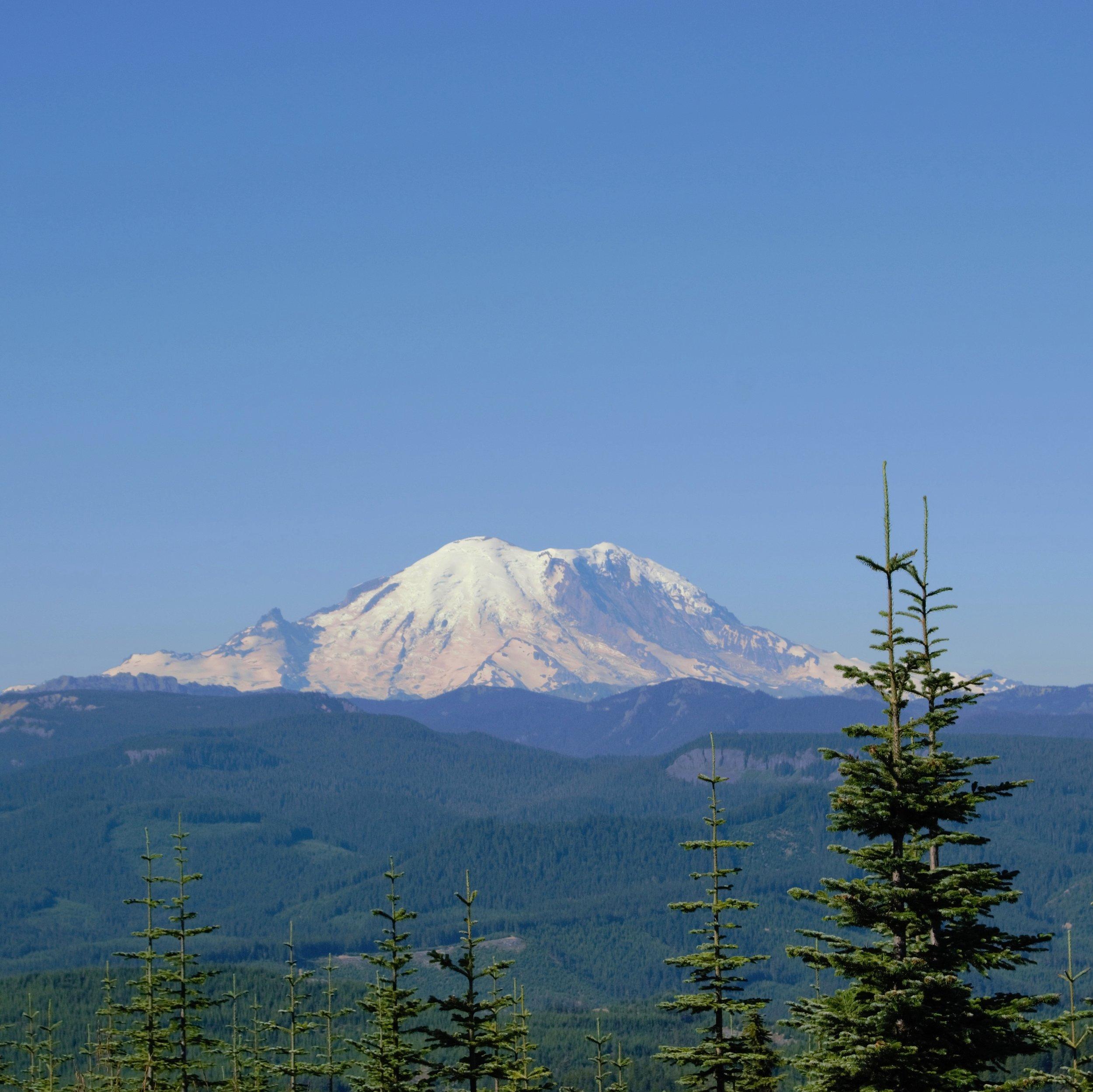 TNC_CCF - Mt. Rainier.jpg