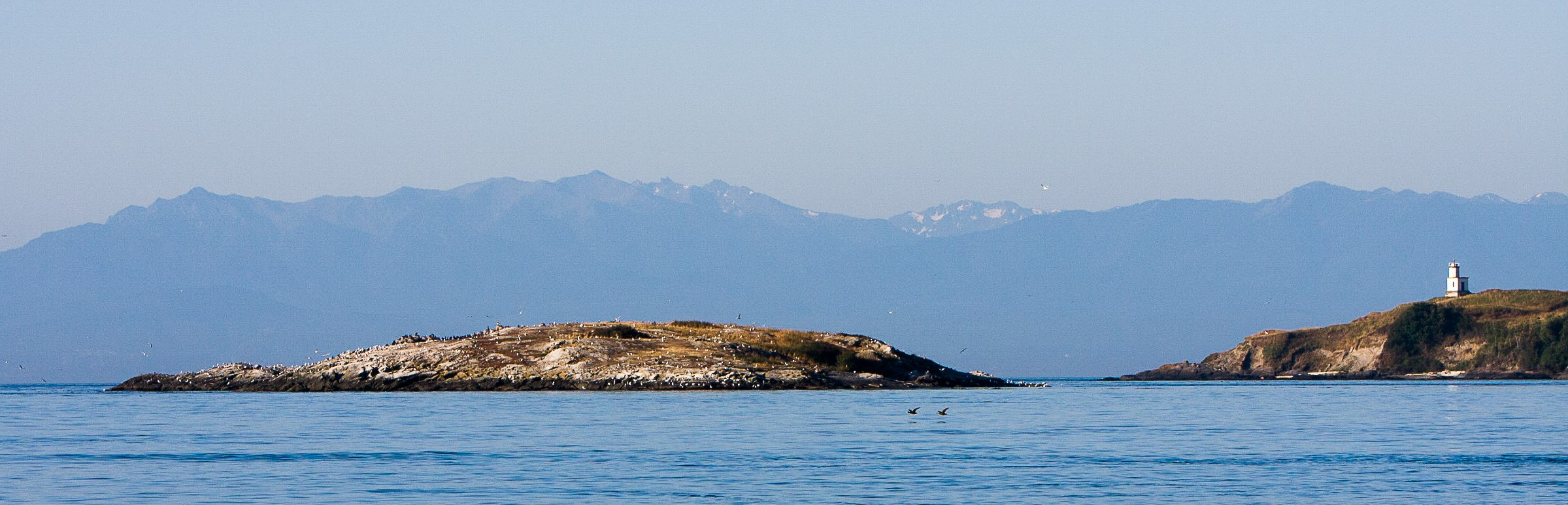 Goose Island, the Cattle Point Lighthouse on the right and the Olympic Mountains in the background across the Strait of Juan de Fuca