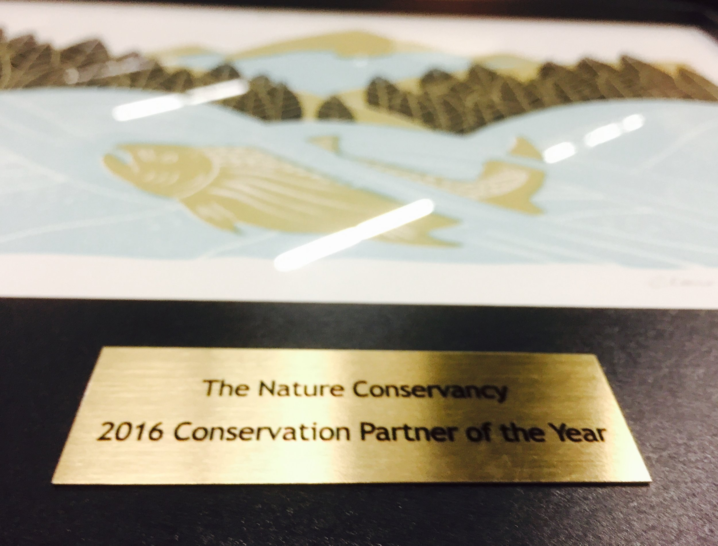"""The Nature Conservancy's """"Partner of the Year"""" award"""