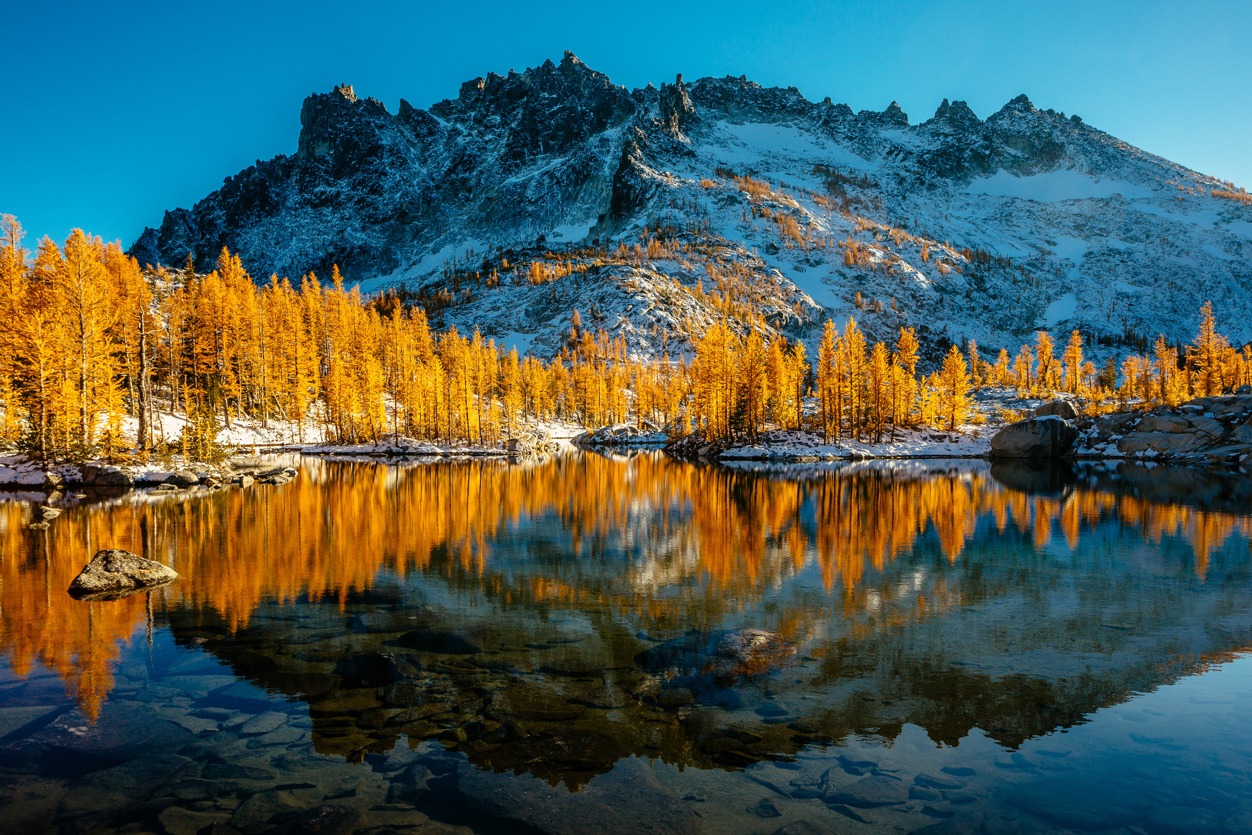 December: Reflection on Golden Larches and Enchanted Places