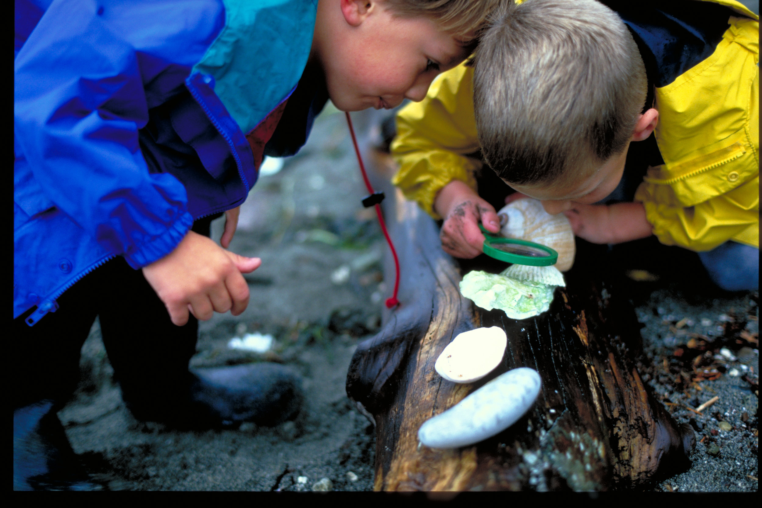 Kids at Foulweather Bluff Preserve (Photo ©Keith Lazelle)