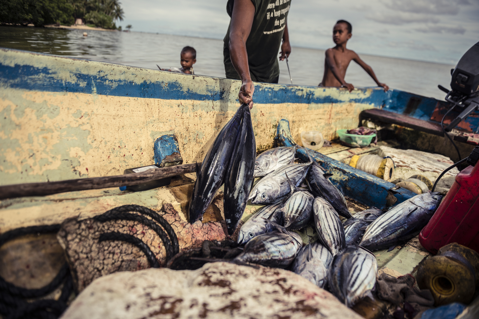 Young boys and two fishermen prepare their morning's catch of skipjack tuna for market, on the beach in front of their homes in the village of Walalung, Kosrae island, Micronesia. (Photo © Nick Hall)