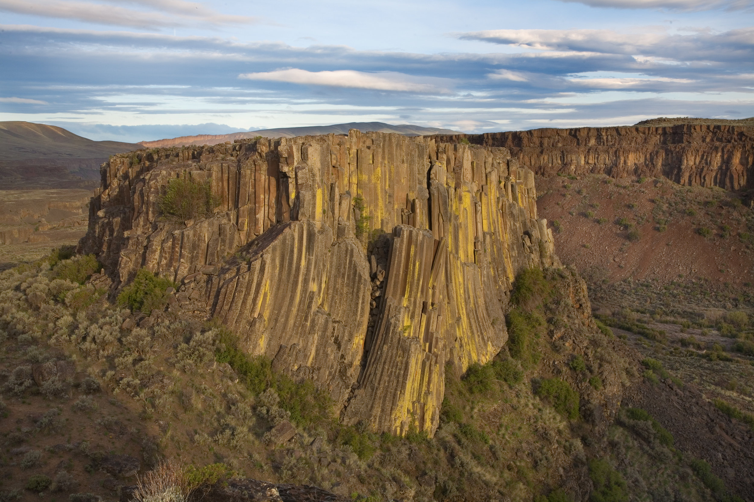 Basalt columns in Moses Coulee. Photo by John Marshall.