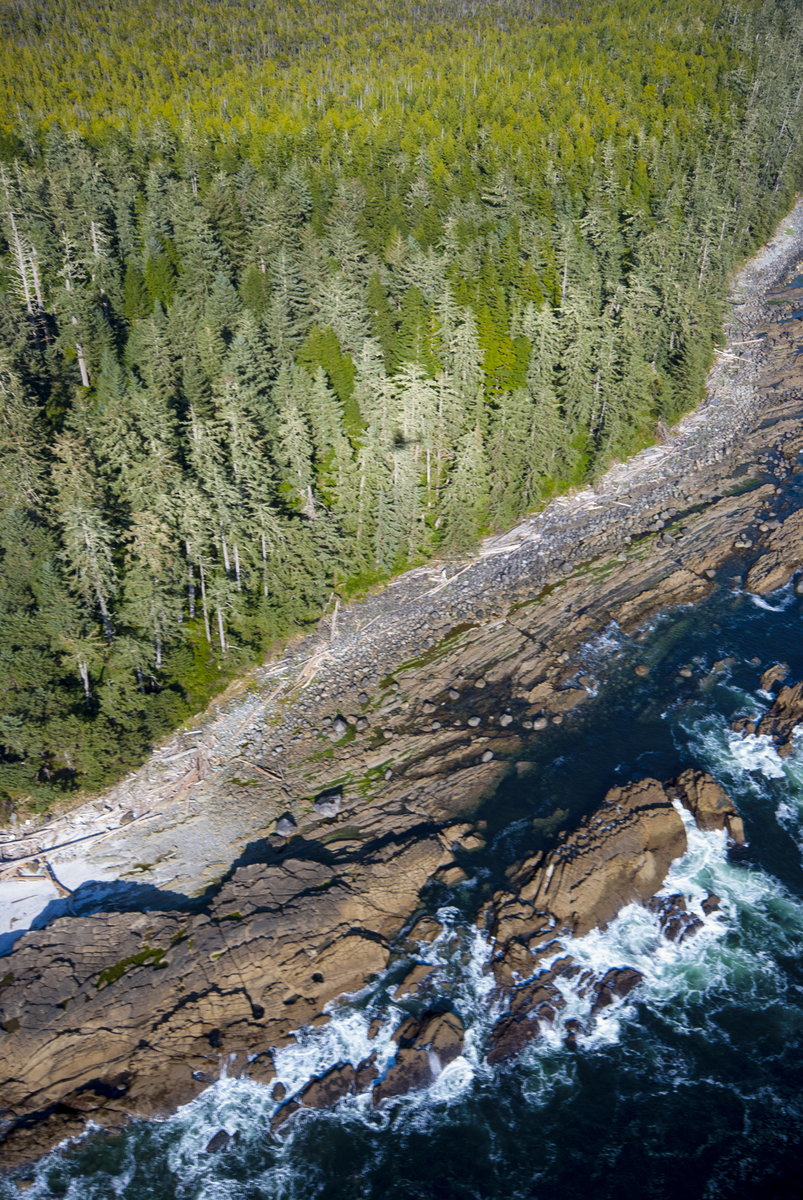 An aerial view of Clayoquot Sound.Photo credit: © Bryan Evans