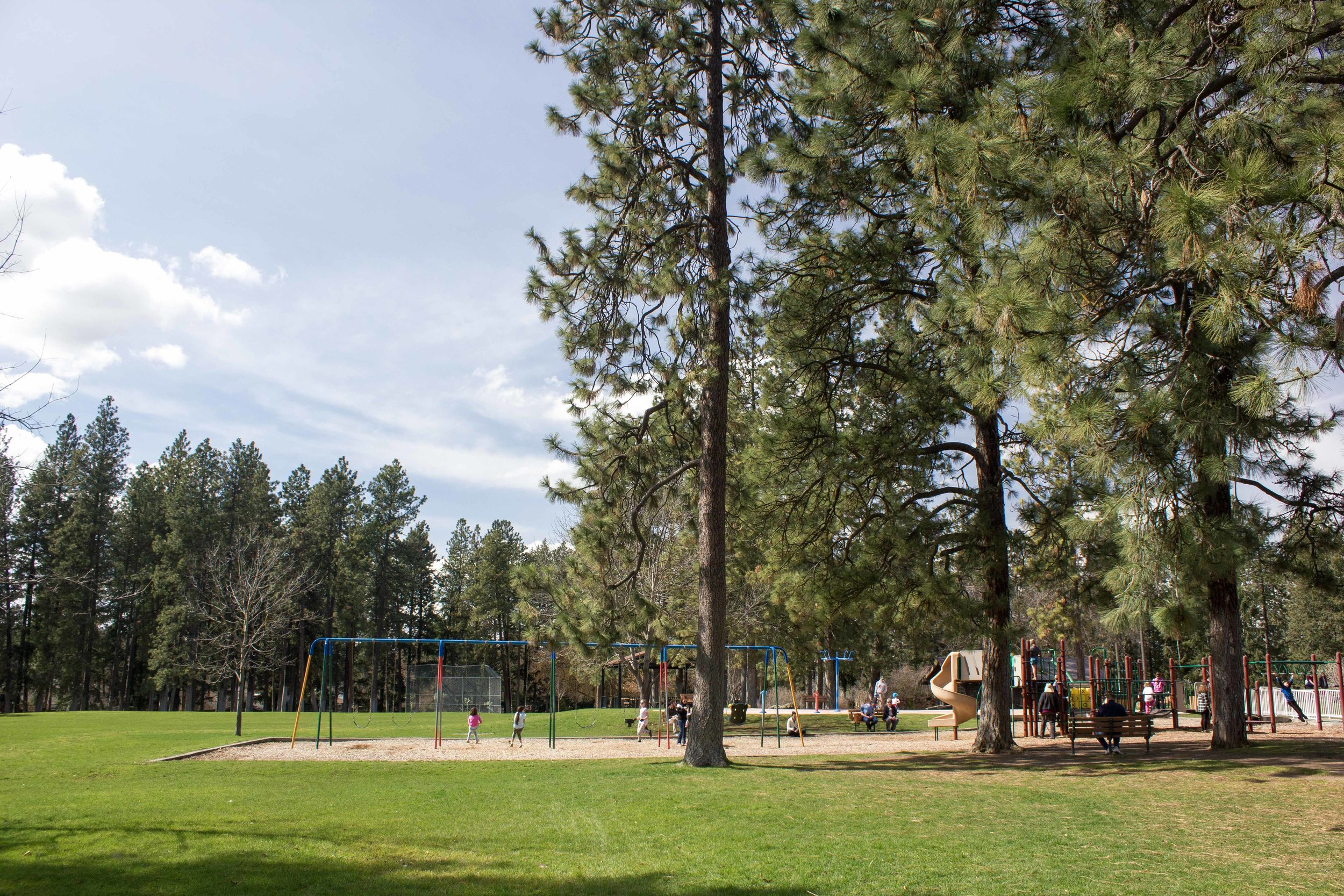 Wide open spaces alongside a playground within Manito Park. Photo by Erica Simek Sloniker.