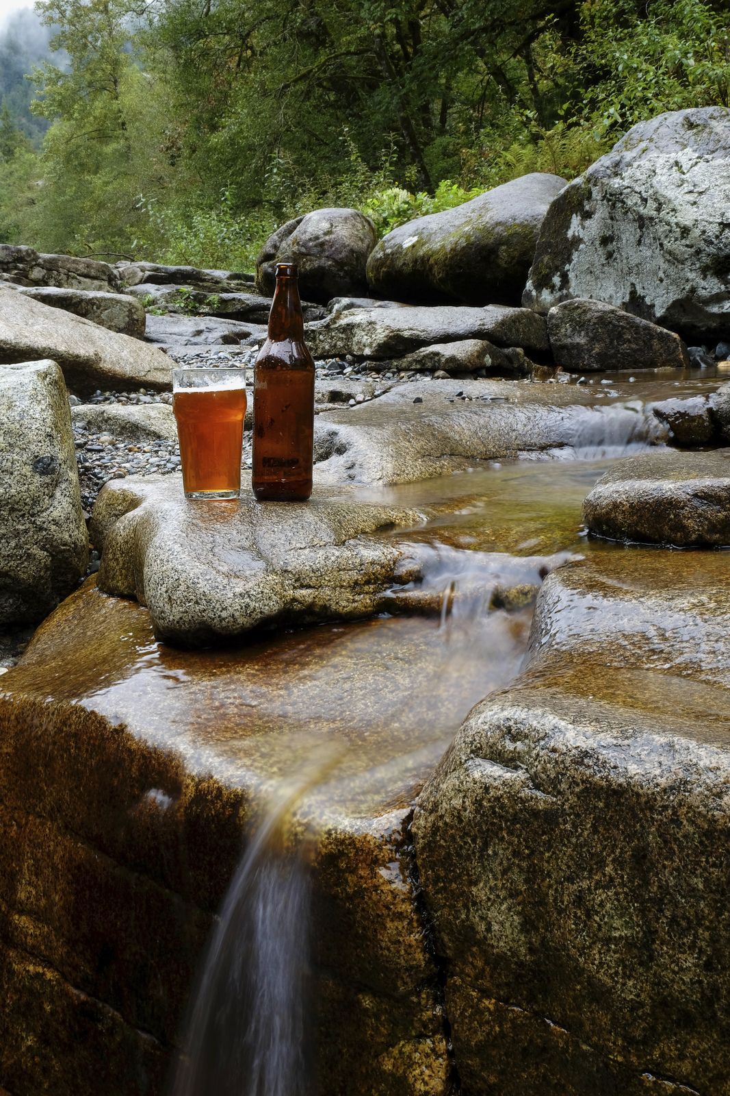 At your next happy hour, raise a glass to local businesses helping protect Washington nature!