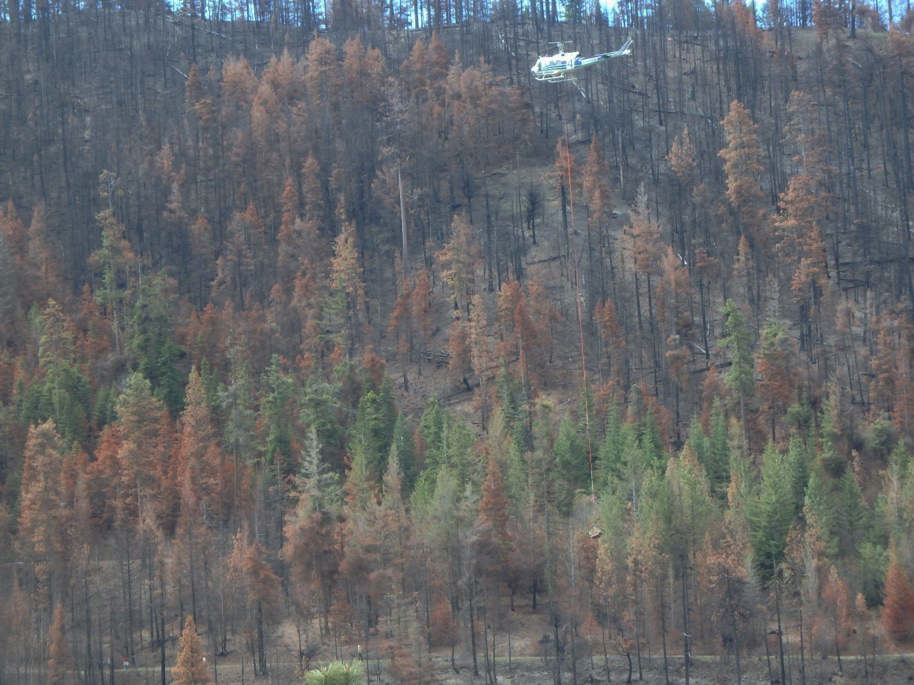 DNR helicopter slinging seedlings into the Rock Creek fire as part of a pilot training exercise.(Photo by Greg Mackey)