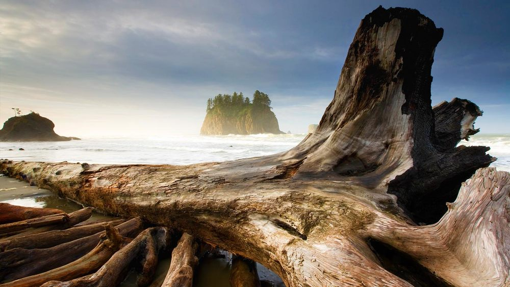 Washington Coast Restoration Initiative