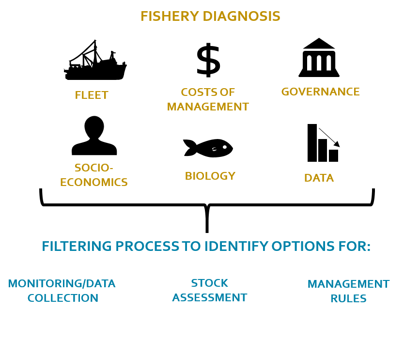 FishPath incorporates several elements of local data to suggest different options that empower a country to move forward in setting a plan toward sustainable fisheries. Graphic courtesy of Jeremy Rude.