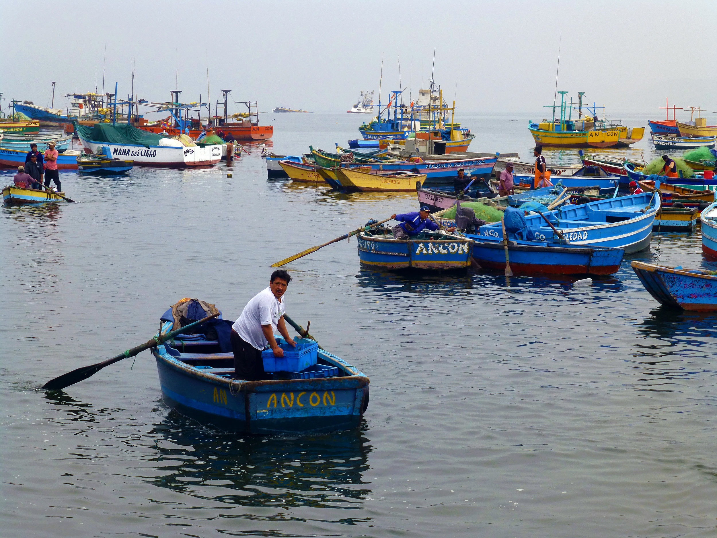 Small-scale fishermen face an unregulated market and income insecurity in Peru, but the local government -- with tools like FishPath and partners including TNC -- are hoping to improve management.