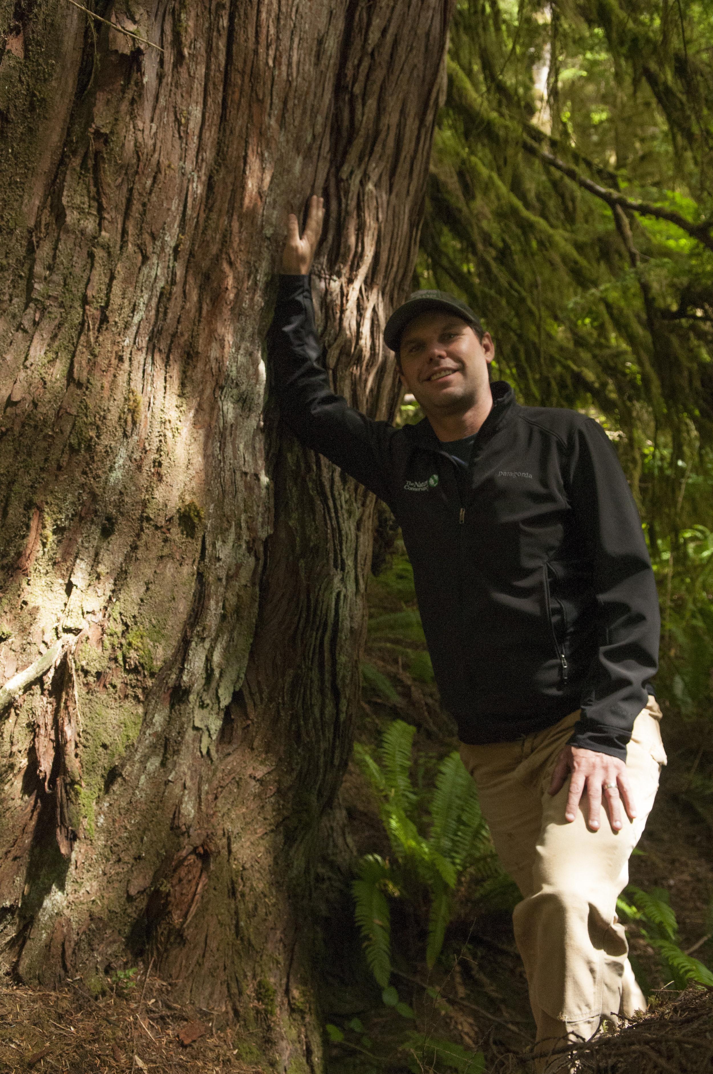 Kyle Smith near a Western red cedar along the Hoh River. Nikolaj Lasbo/TNC