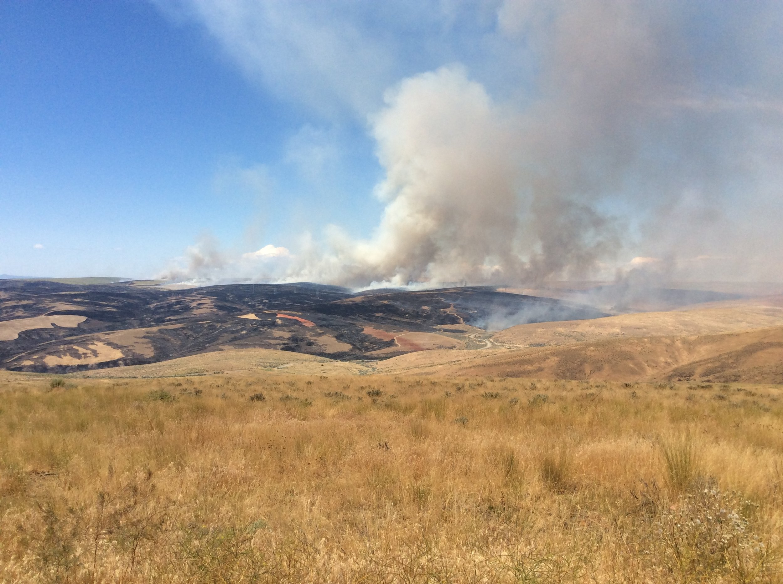 Fire approaches our Beezley Hills Preserve on June 28. Our land is in the foreground and on the right of the picture. Photo by Corinna Hanson/TNC