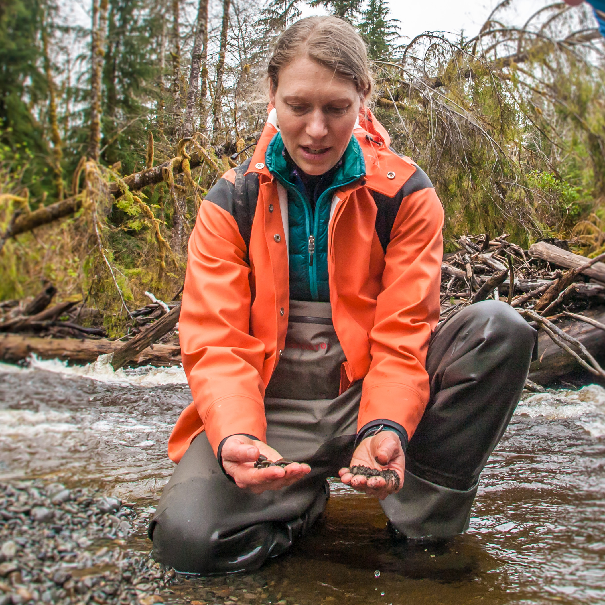 "Emily Howe, Aquatic Ecologist    Emily works across ecosystems, looking at how landscape configuration and management shapes relationships for food webs, organisms and ecosystem processes.   ""Following water from snowcaps to whitecaps."""