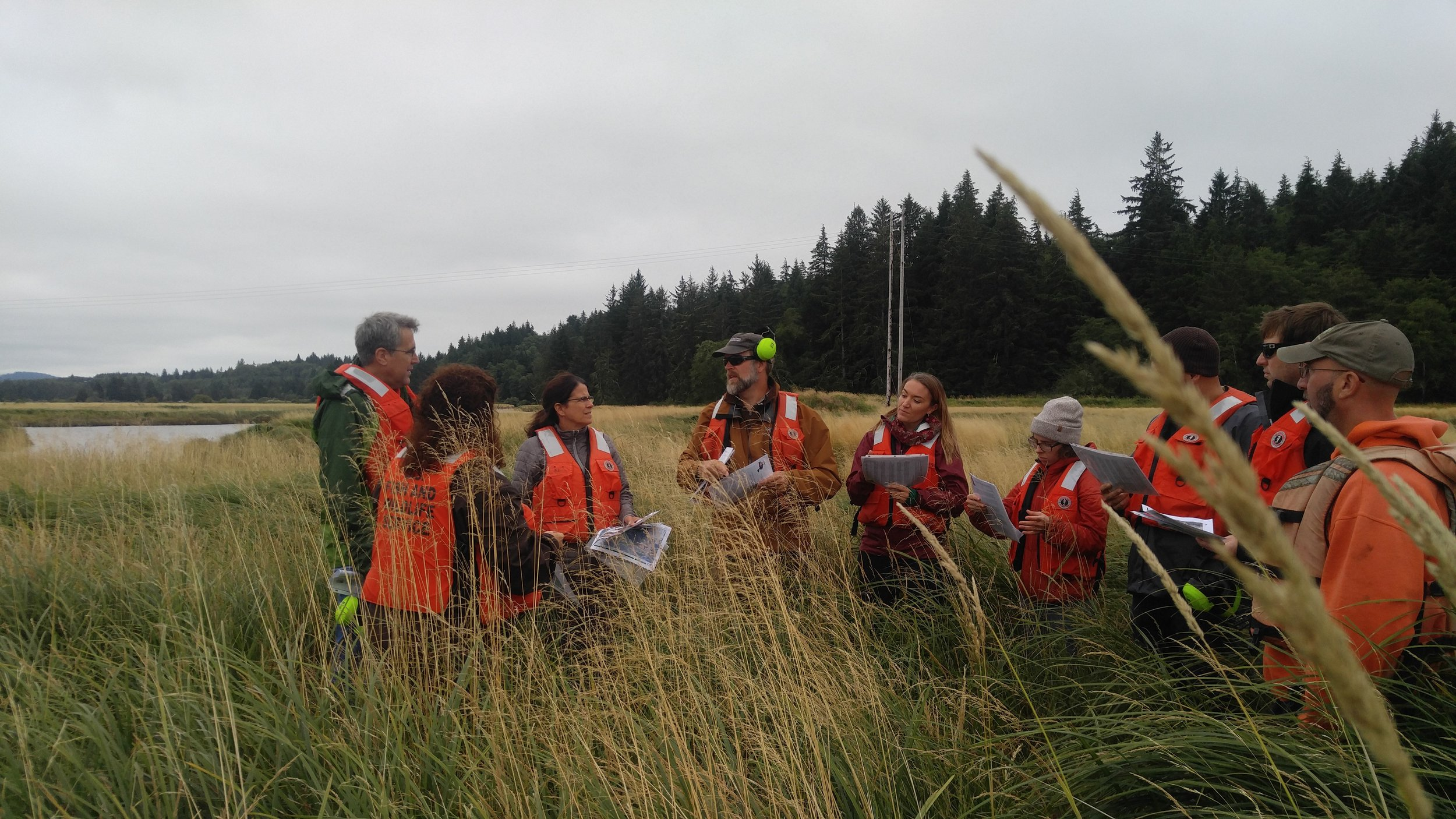 We learned about what it took to remove acres of invasive Spartina from Willapa Bay. Photo © Jessica Helsley