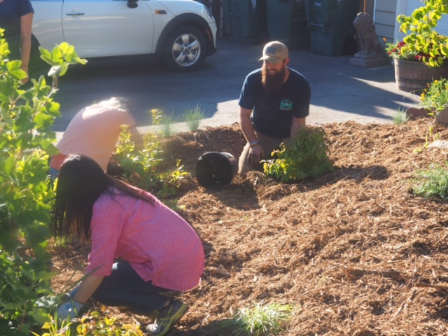 Taylor Pesce at work as part of the first Veteran Stormwater Action Team. Photo courtesy of the Snohomish Conservation District.