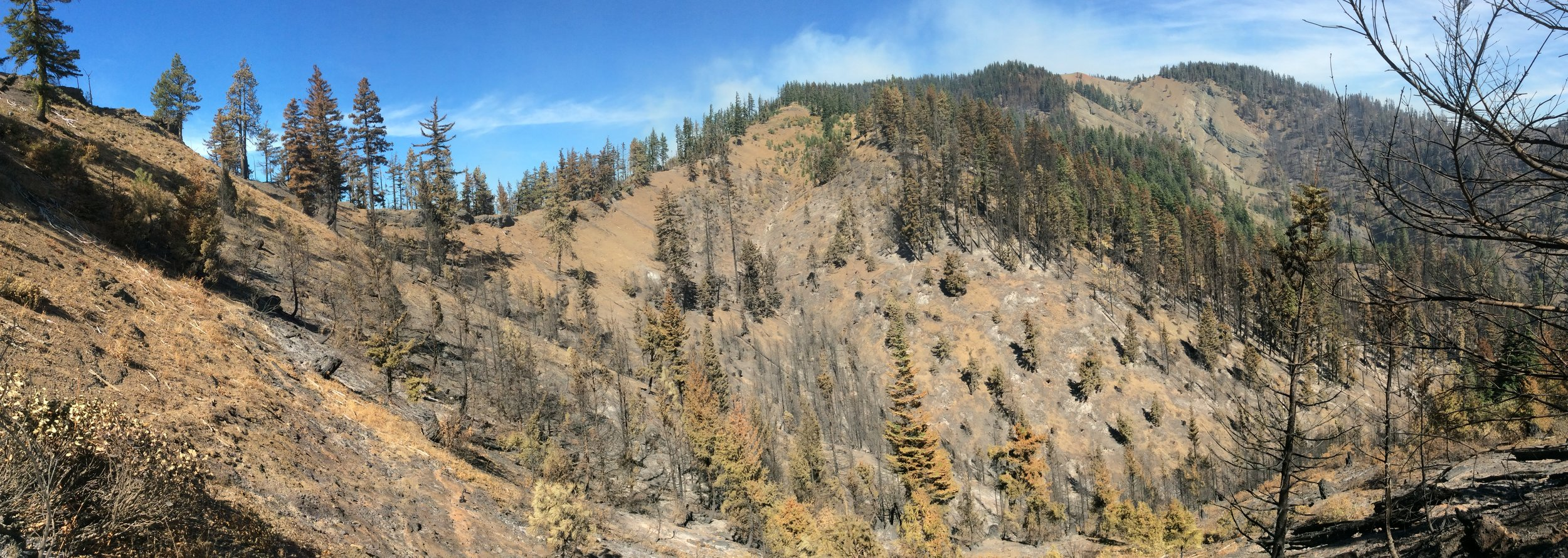 View toward Hex Mountain and headwaters of Newport Creek. Mixed severity burn in timber and high severity in tree plantations. Photo © Brian Mize/TNC