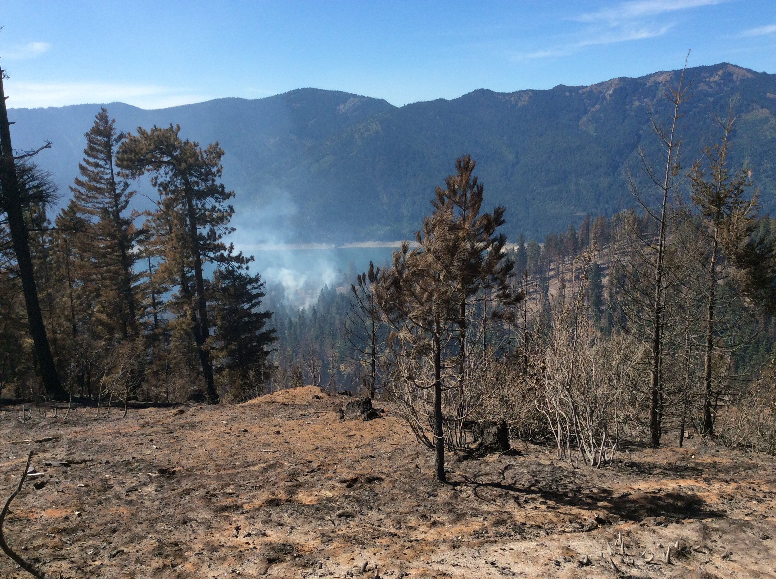 Looking west toward upper Bell Creek drainage. Tree plantation below road experienced a high severity burn. Areas in bottom had mixed severity. Ridge line with smoke is the top of larger Morgan thinning unit. Photo © Brian Mize/TNC
