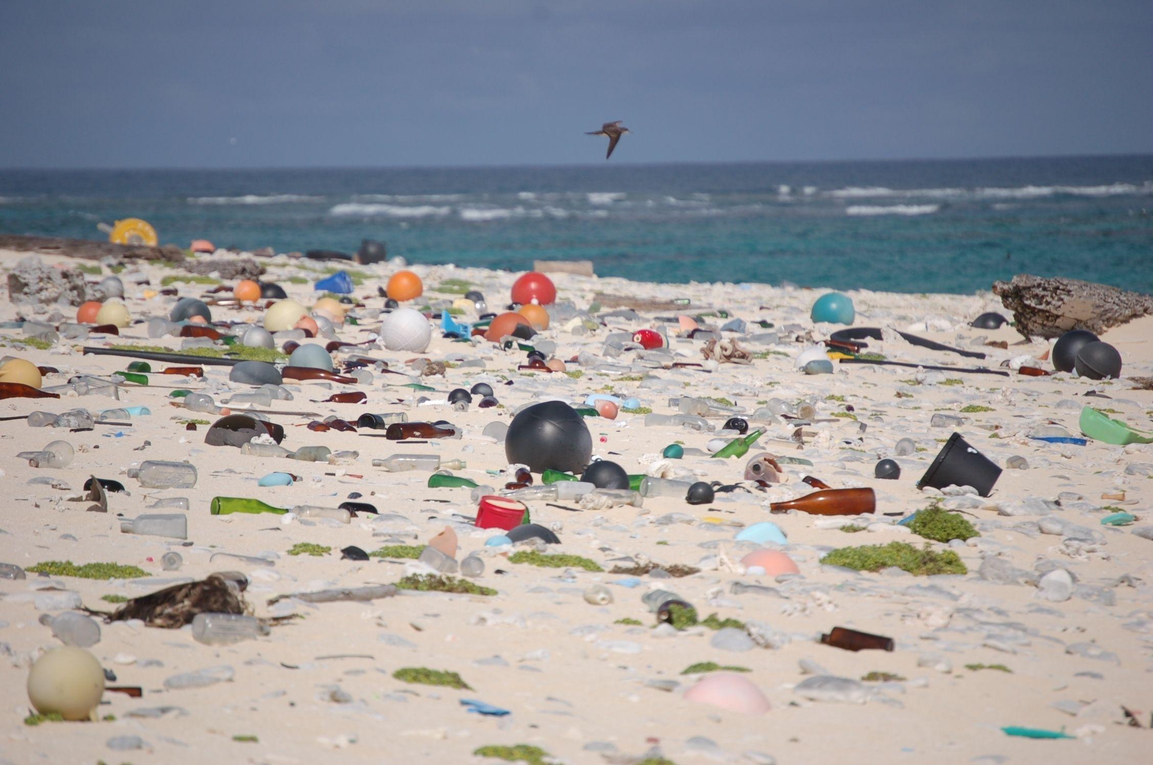 Marine debris litters a beach on Laysan Island in the Hawaiian Islands National Wildlife Refuge, where it washed ashore. Photo © U.S. Fish and Wildlife