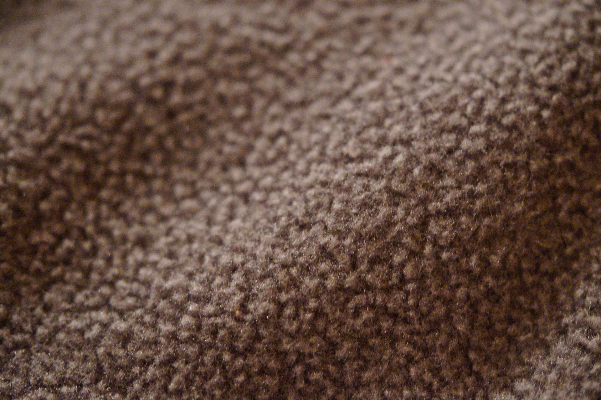 Fleece is one of many synthetic fibers to contain microfibers that don't break down in the ocean.