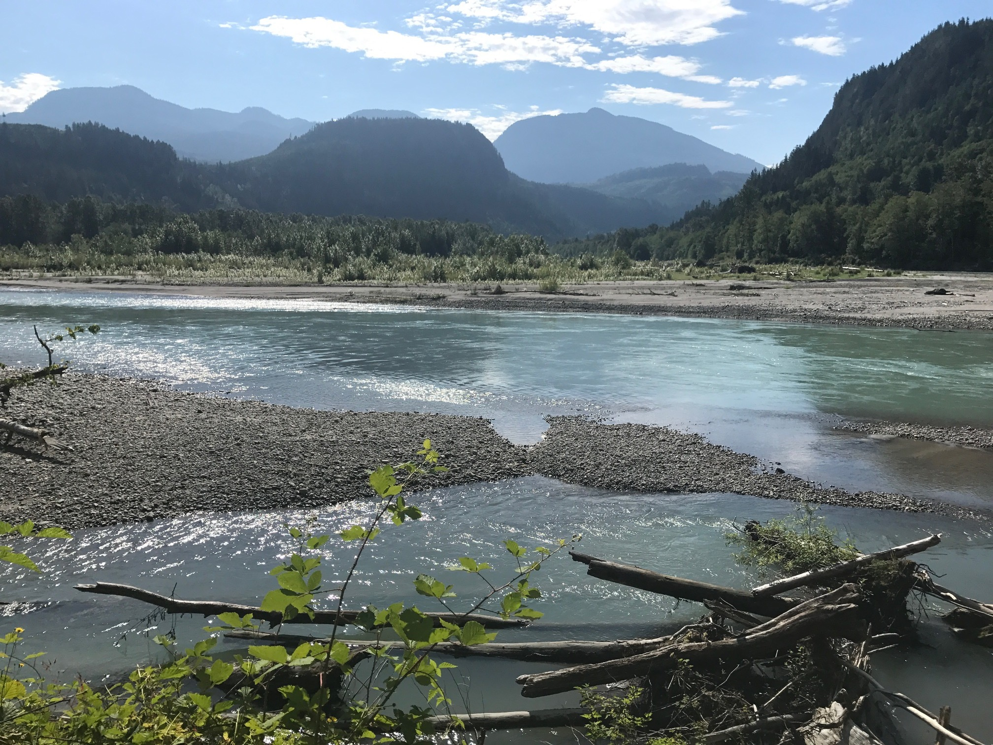 Smith Preserve, located off the Sauk River in the North Cascades. Photo by Randi Shaw