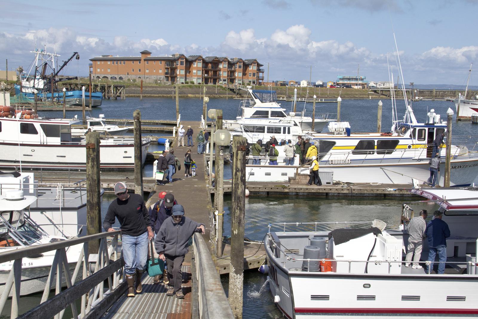 A busy dock in Westport,Grays Harbor County. Photo by Joel Rogers.