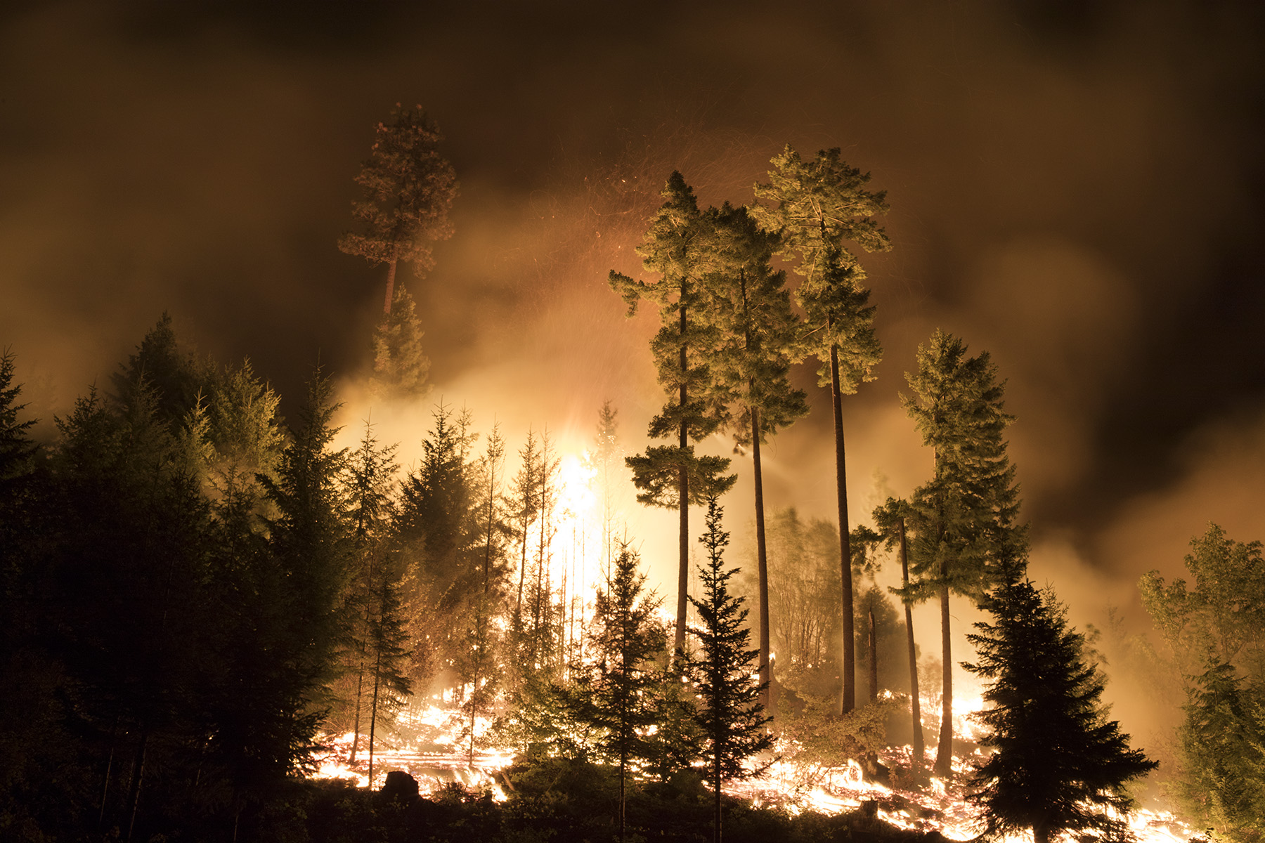 The Jolly Mountain fire burns through the night earlier this year. Photo © John Marshall
