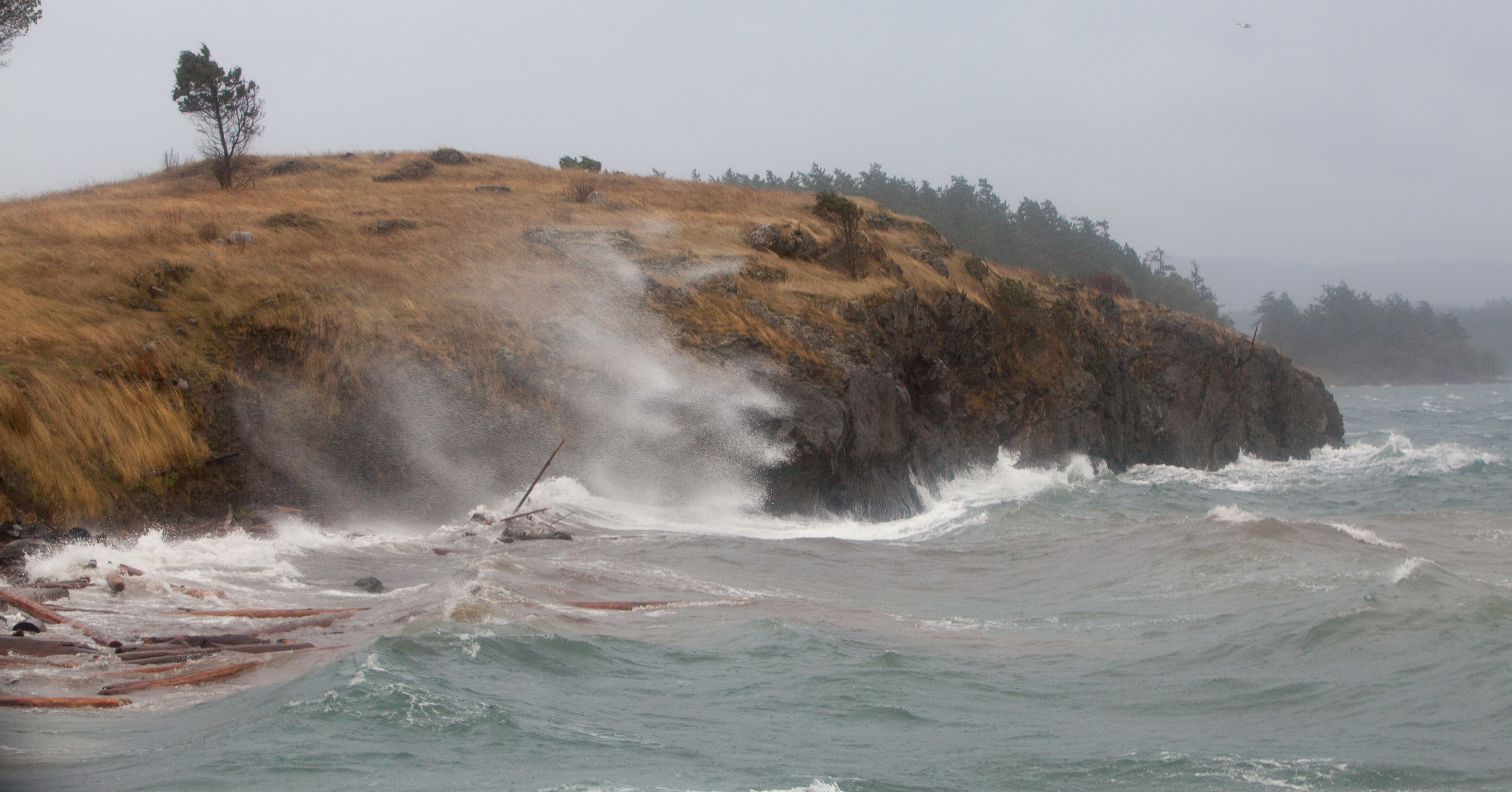 King tides at Yellow Island in 2011. Photo © Phil Green.