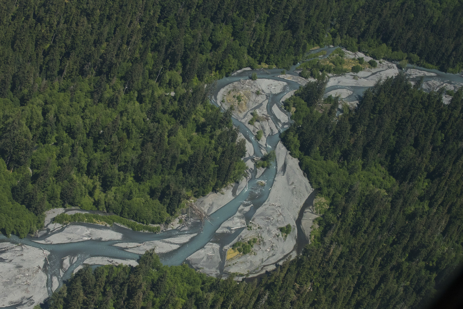 The Hoh River. Photo by Hannah Letinich/LightHawk.