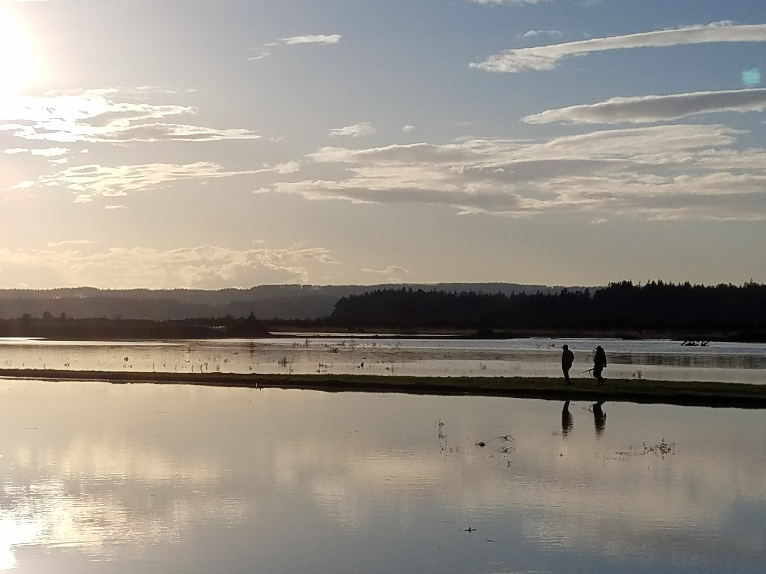 Late in the day after a sunny tour of the estuary-restoration project in the Stillaguamish. Photo ©Jason Griffith/Stillaguamish Tribe