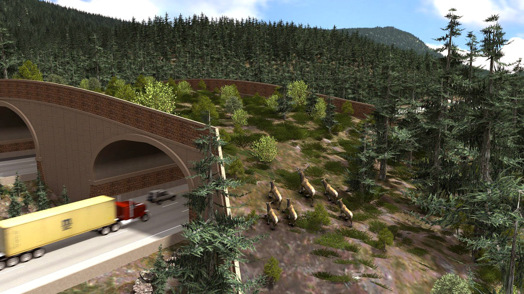 An artist's rendering of the wildlife crossing currently under construction near Snoqualmie Pass on Interstate 90. Photo courtesy of the Washington State Department of Transportation.