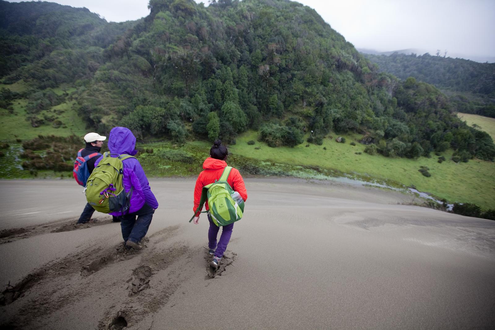 Valdivia Coastal Reserve, Chile: Sand dunes are slowly overtaking the temperate rainforest. Photo © Ian Shive