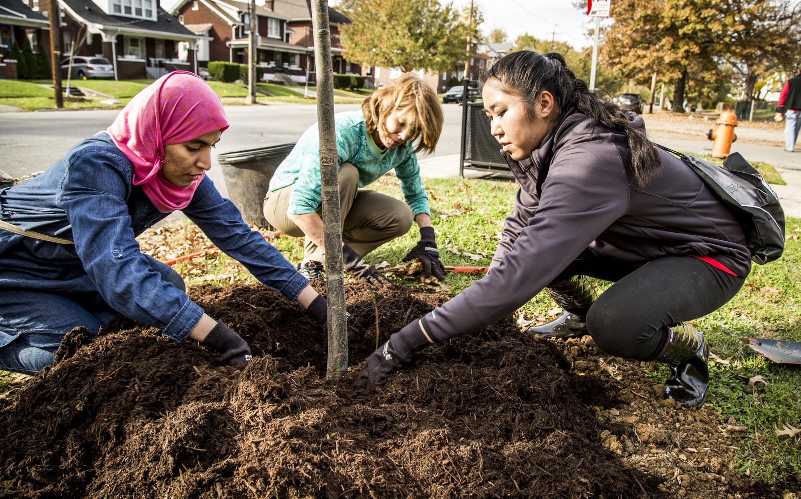 The Brightside Organization, The Nature Conservancy, UPS and Brown-Forman partnered to plant 150 trees along West Broadway from 20th Street to the end at Shawnee Park in Louisville, Kentucky. Photo credit: © The Nature Conservancy (Devan King)