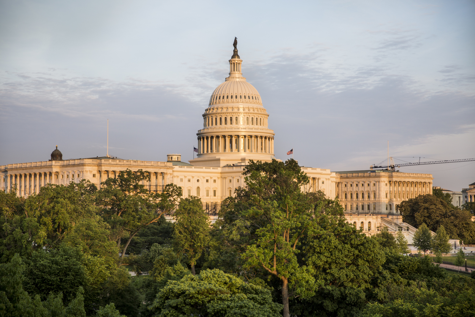 The United States Capitol in Washington, D.C. Photo © Devan King/The Nature Conservancy